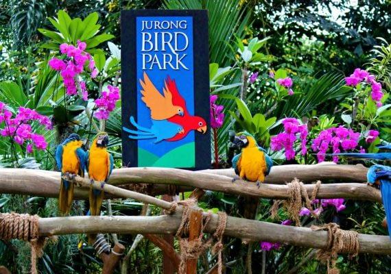 DAY 03: Bali Bird Park, Monkey Forest & Ubud Market